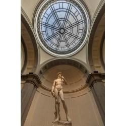 Davi - Galleria dell'Accademia - Florença