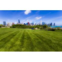 Chicago Skyline/EUA